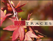Trace n°9